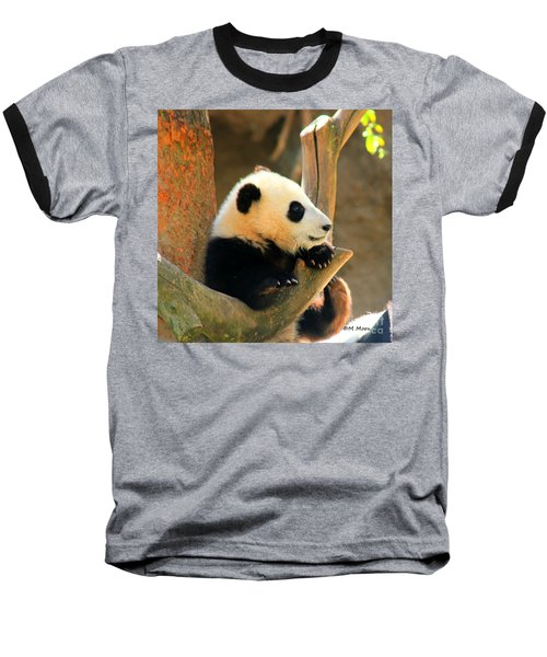 San Diego Zoo Panda Bear Xiao Liwu Baseball T-Shirt