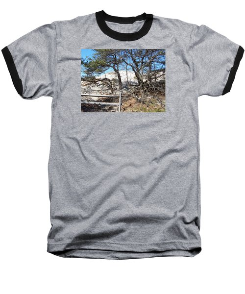 Sand Dune With Trees Baseball T-Shirt by Catherine Gagne