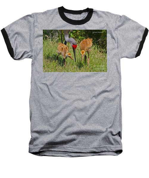 Sandhill Crane Family Feeding Baseball T-Shirt