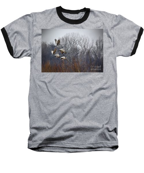 Sandhill Cranes Takeoff Baseball T-Shirt by Liz Masoner