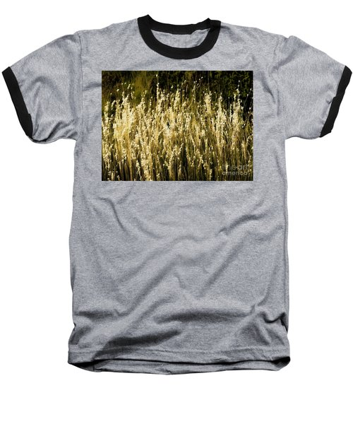 Santa Fe Grasses Baseball T-Shirt