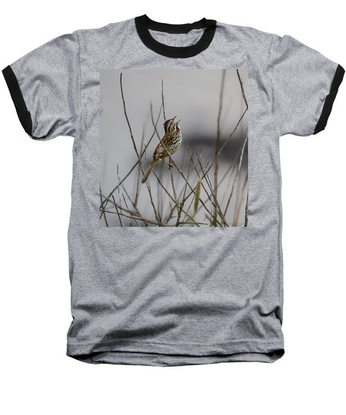 Savannah Sparrow Baseball T-Shirt