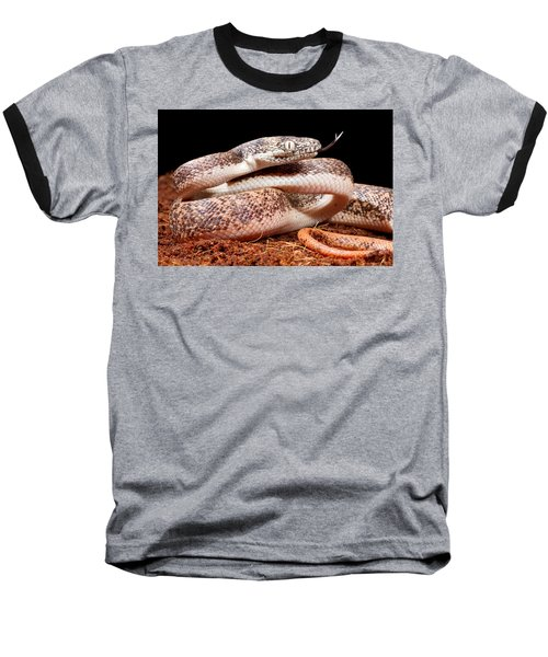 Savu Python In Defensive Posture Baseball T-Shirt
