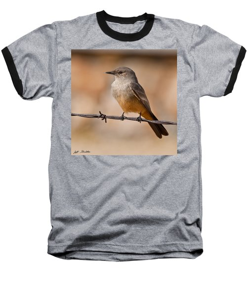 Say's Phoebe On A Barbed Wire Baseball T-Shirt