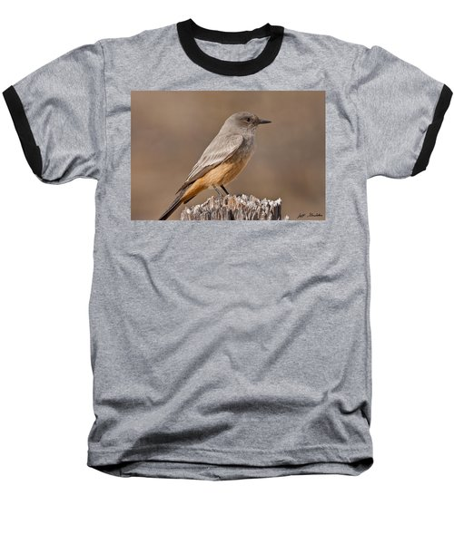 Say's Phoebe On A Fence Post Baseball T-Shirt