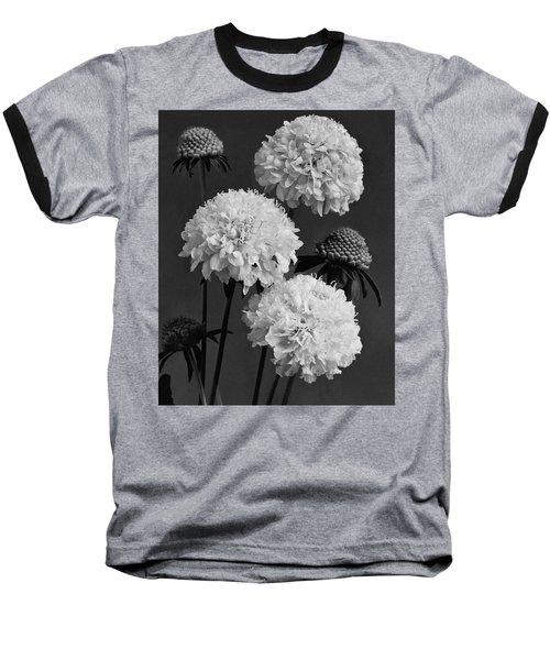 Scabiosa Peace Flowers Baseball T-Shirt