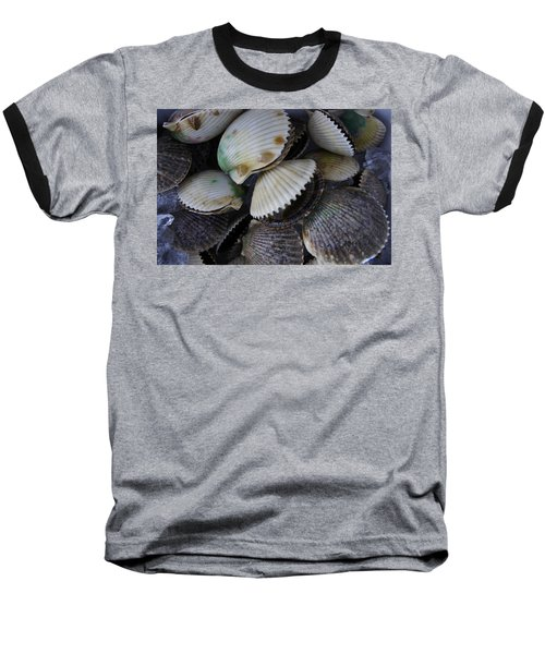 Scallops Baseball T-Shirt by Laurie Perry