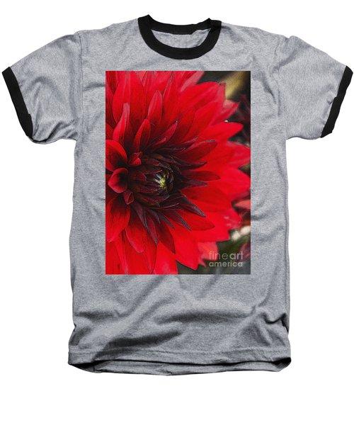 Scarlet Dahlia Baseball T-Shirt