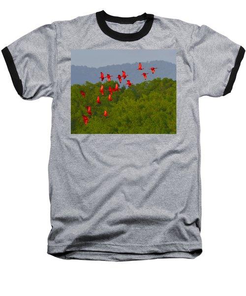 Scarlet Ibis Baseball T-Shirt by Tony Beck