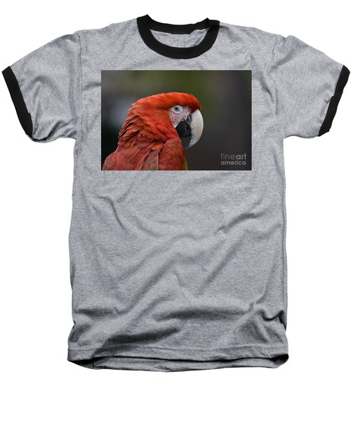 Baseball T-Shirt featuring the photograph Scarlet Macaw by David Millenheft