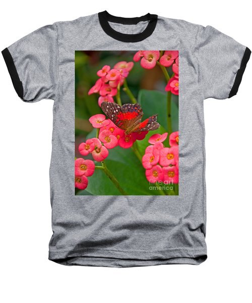 Scarlet Swallowtail Butterfly On Crown Of Thorns Flowers Baseball T-Shirt