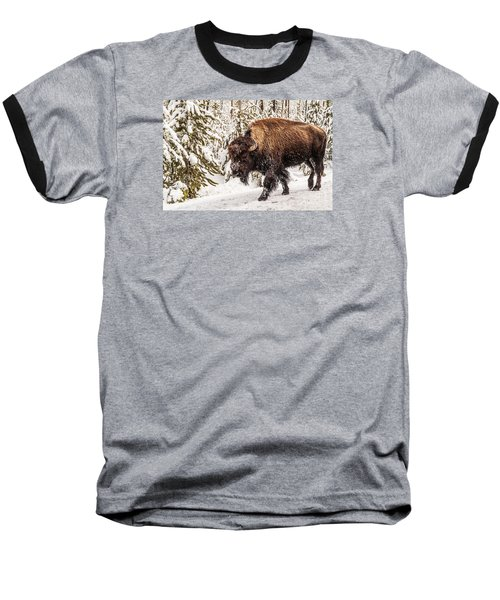 Scary Bison Baseball T-Shirt