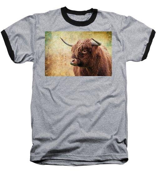 Scottish Highland Steer Baseball T-Shirt by Steve McKinzie