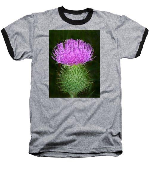 Scottish Thistle  Baseball T-Shirt