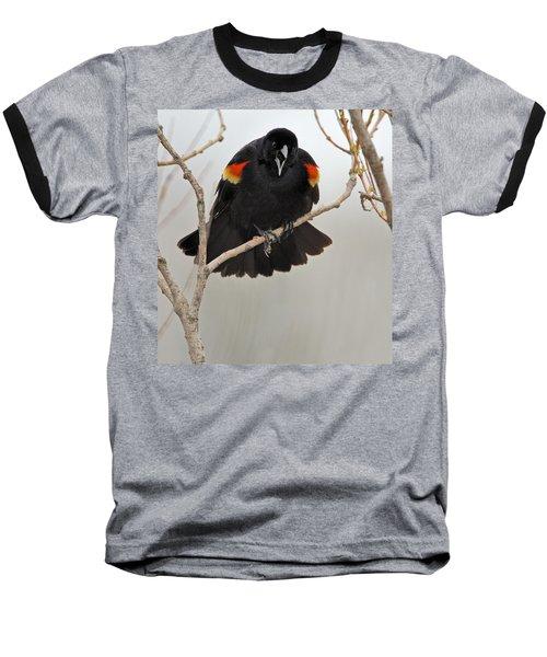 Screaming Meenie Baseball T-Shirt