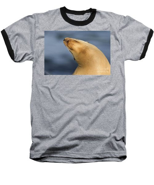 Baseball T-Shirt featuring the photograph Sea Lion Stretch by Bryan Keil