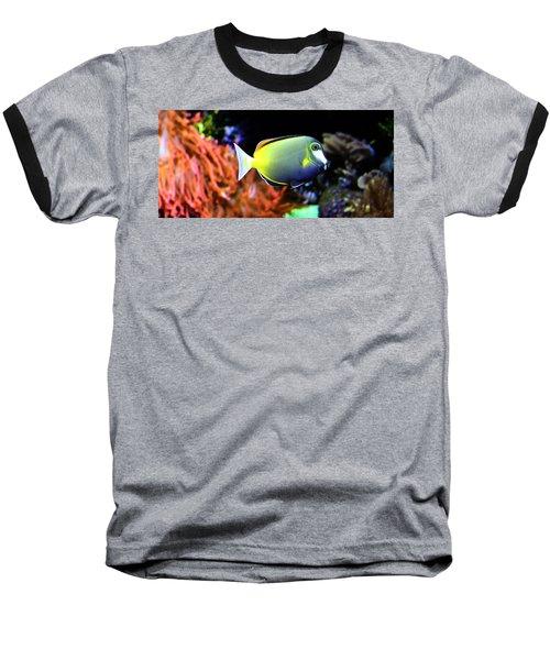 Sea World Baseball T-Shirt