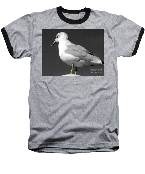 Baseball T-Shirt featuring the photograph Seagull In Black And White by Nina Silver
