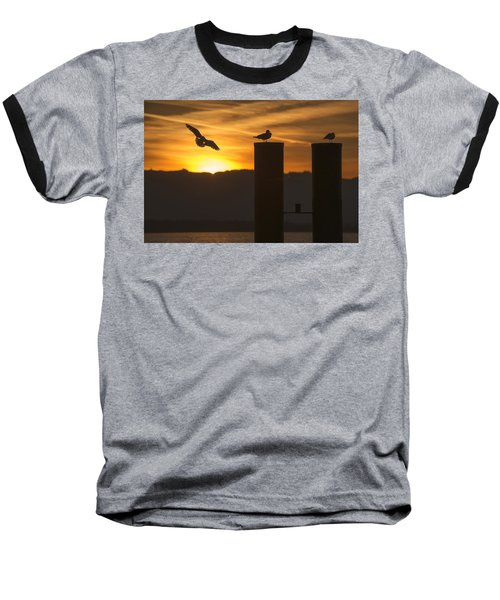 Seagull In The Sunset Baseball T-Shirt by Chevy Fleet