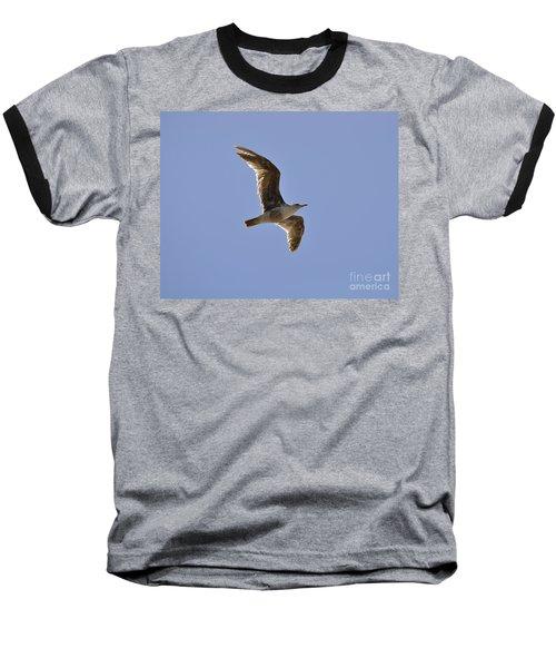 Seagull N Light  Baseball T-Shirt