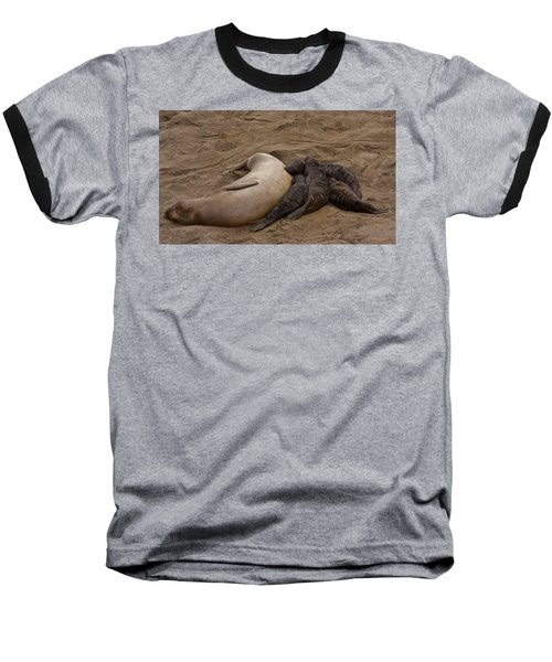Seal And Pups Baseball T-Shirt