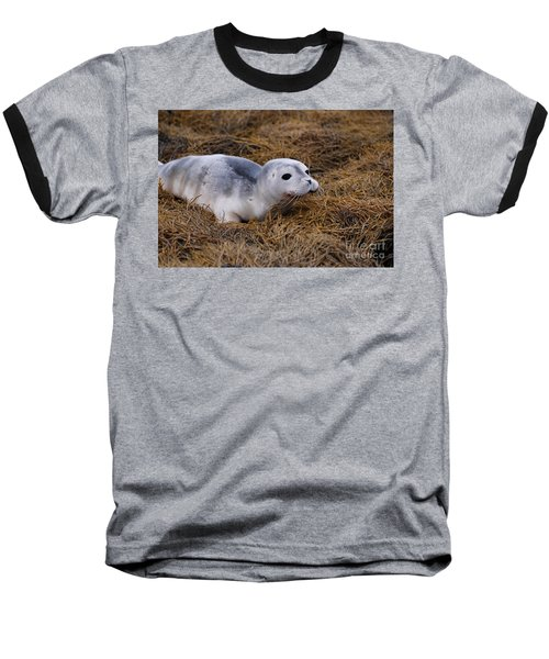 Seal Pup Baseball T-Shirt by DejaVu Designs
