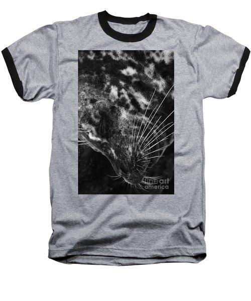 Seal Solitude Baseball T-Shirt