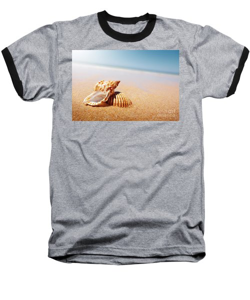 Seashell And Conch Baseball T-Shirt by Carlos Caetano
