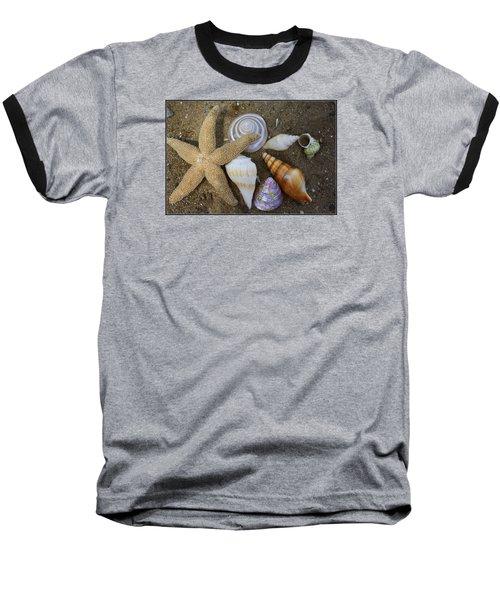 Seashells And Star Fish Baseball T-Shirt by Dora Sofia Caputo Photographic Art and Design