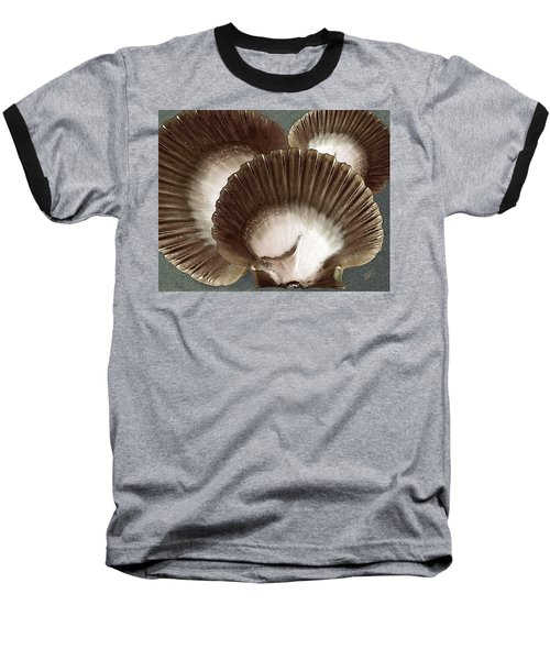 Seashells Spectacular No 22 Baseball T-Shirt by Ben and Raisa Gertsberg
