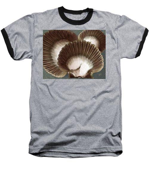 Seashells Spectacular No 22 Baseball T-Shirt
