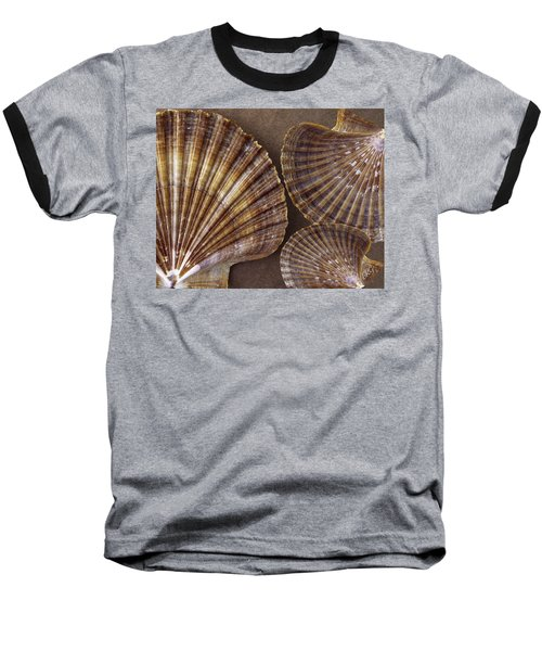 Seashells Spectacular No 7 Baseball T-Shirt