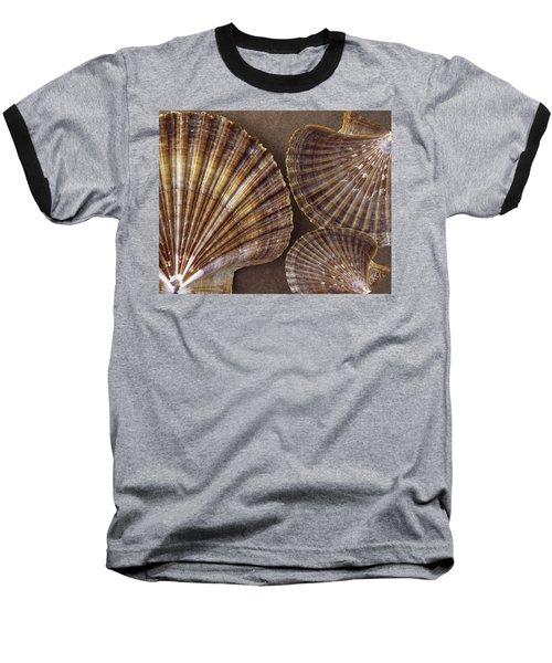 Seashells Spectacular No 7 Baseball T-Shirt
