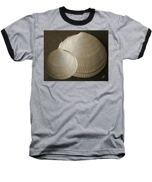 Seashells Spectacular No 8 Baseball T-Shirt by Ben and Raisa Gertsberg