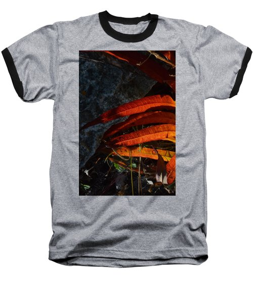 Seasonal Color Theory Baseball T-Shirt by Brian Boyle