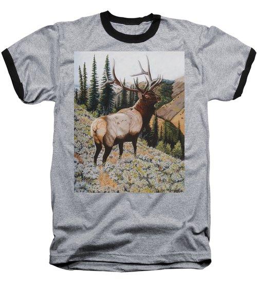 Seasoned Veteran Baseball T-Shirt