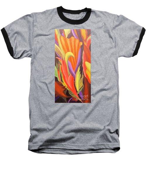 Secret Place Baseball T-Shirt