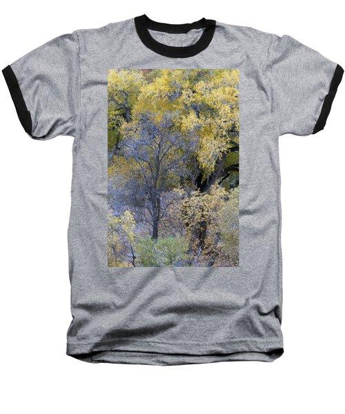 Sedona Fall Color Baseball T-Shirt