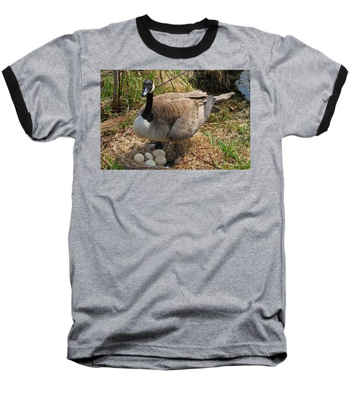 Baseball T-Shirt featuring the photograph See My Eggs by Elizabeth Winter