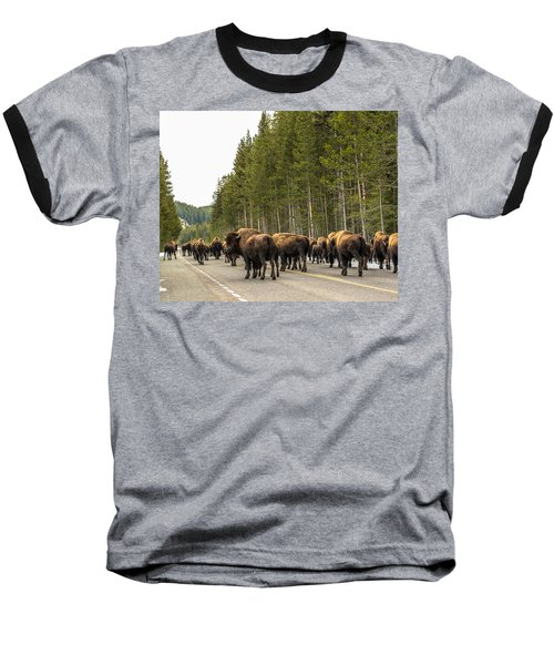 Baseball T-Shirt featuring the photograph See You In Spring by Yeates Photography