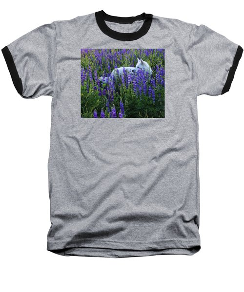 Sekani In Lupine Baseball T-Shirt by Sean Sarsfield