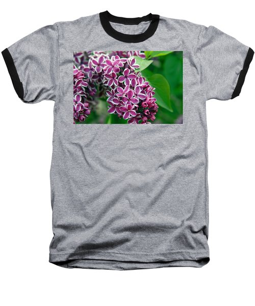 Sensation Lilac Baseball T-Shirt by Richard Engelbrecht