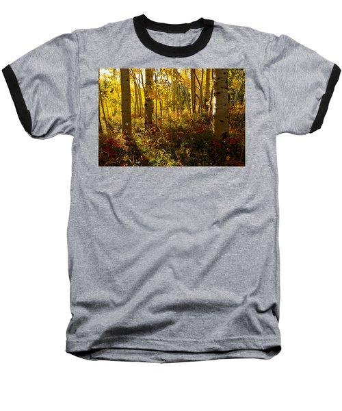 September Scene Baseball T-Shirt