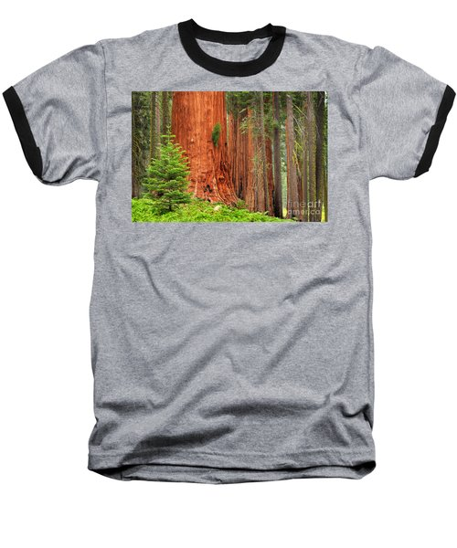 Sequoias Baseball T-Shirt