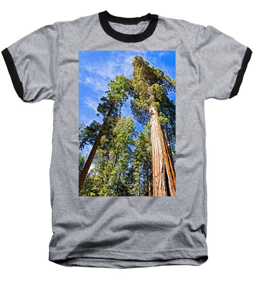 Sequoias Reaching To The Clouds In Mariposa Grove In Yosemite National Park-california Baseball T-Shirt