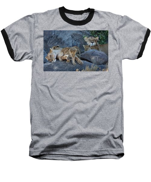 Serengeti Pride Baseball T-Shirt by David Beebe