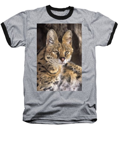 Baseball T-Shirt featuring the photograph Serval Portrait Wildlife Rescue by Dave Welling