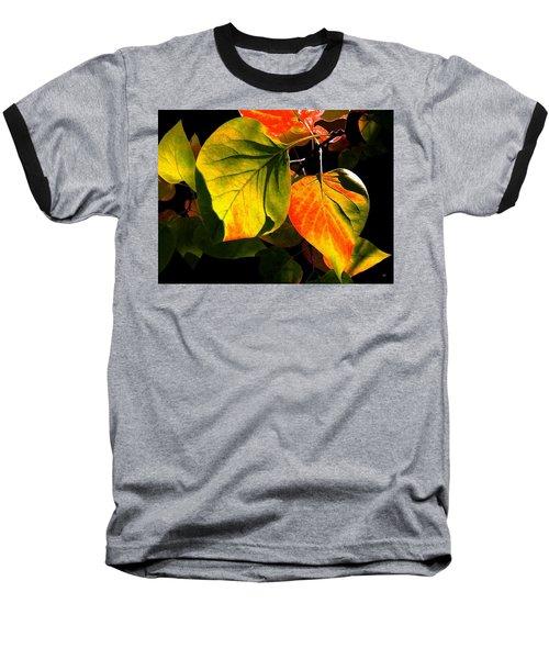 Shades And Shadows Baseball T-Shirt by Will Borden