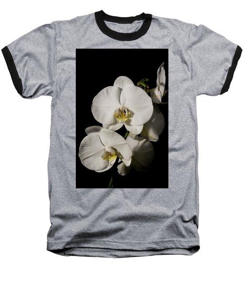 Shadowy Orchids Baseball T-Shirt
