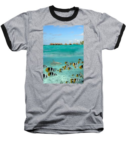 Over-under With Shark And Butterfly Fish At Bora Bora Baseball T-Shirt by IPics Photography